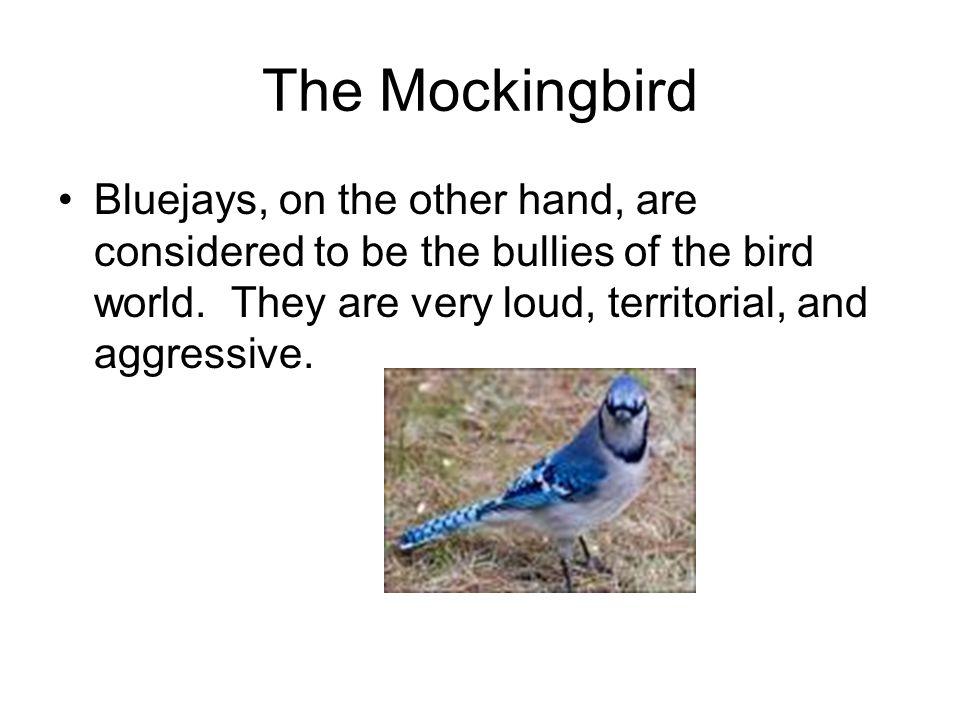 Symbolism To Kill A Mockingbird The Mockingbird A Creature That