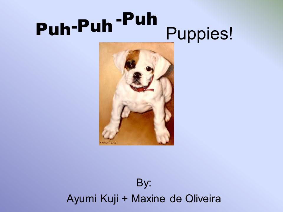 Puh By Ayumi Kuji Maxine De Oliveira Puh Puppies Ppt Download