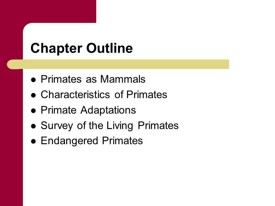 Chapter 5 Overview Of Living Primates Chapter Outline