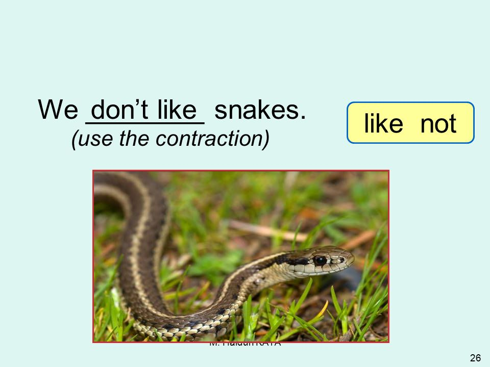 M. Hâldun KAYA 26 We ________ snakes.don't like (use the contraction) 3-9 Let's Practice like not