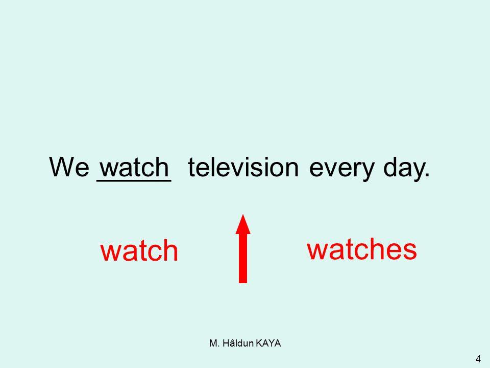 M. Hâldun KAYA 4 We _____ television every day. watch watches watch 3-1 Let's Practice