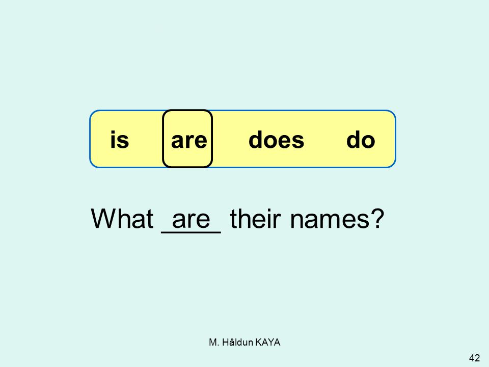 M. Hâldun KAYA 42 What ____ their names are 3-13 Let's Practice is are does do
