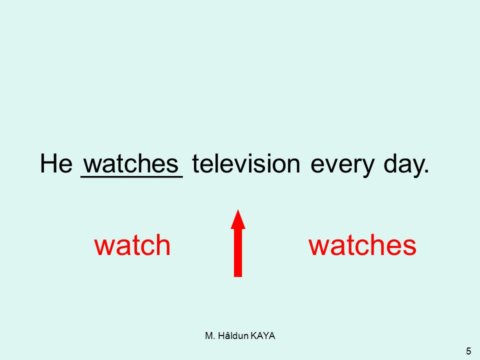 M. Hâldun KAYA 5 He _______ television every day. watchwatches 3-1 Let's Practice