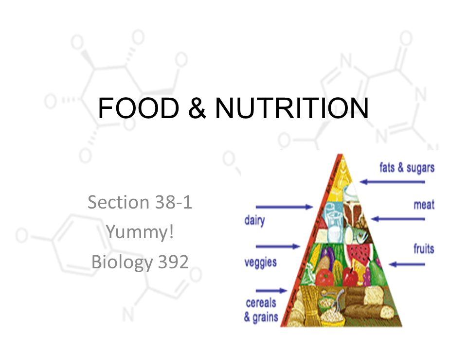 Food Nutrition Section 381 Yummy Biology Ppt Download. 1 Food Nutrition Section 381 Yummy Biology 392. Worksheet. Nutrition Worksheet Answer Key At Clickcart.co