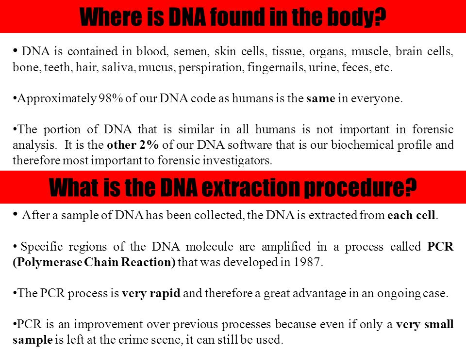 How is DNA used to solve crimes? 8 th Grade Forensic Science
