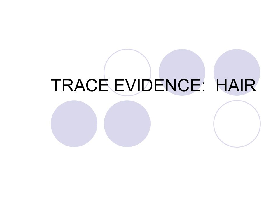 Trace Evidence Hair Anatomy Of A Hair Cortex Largest Portion Of