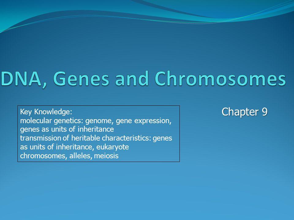 Chapter 9 Key Knowledge: molecular genetics: genome, gene