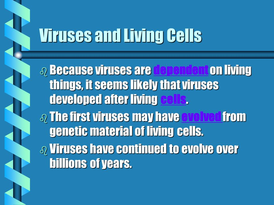 Viruses and Living Cells b Because viruses are on living things, it seems likely that viruses developed after living.