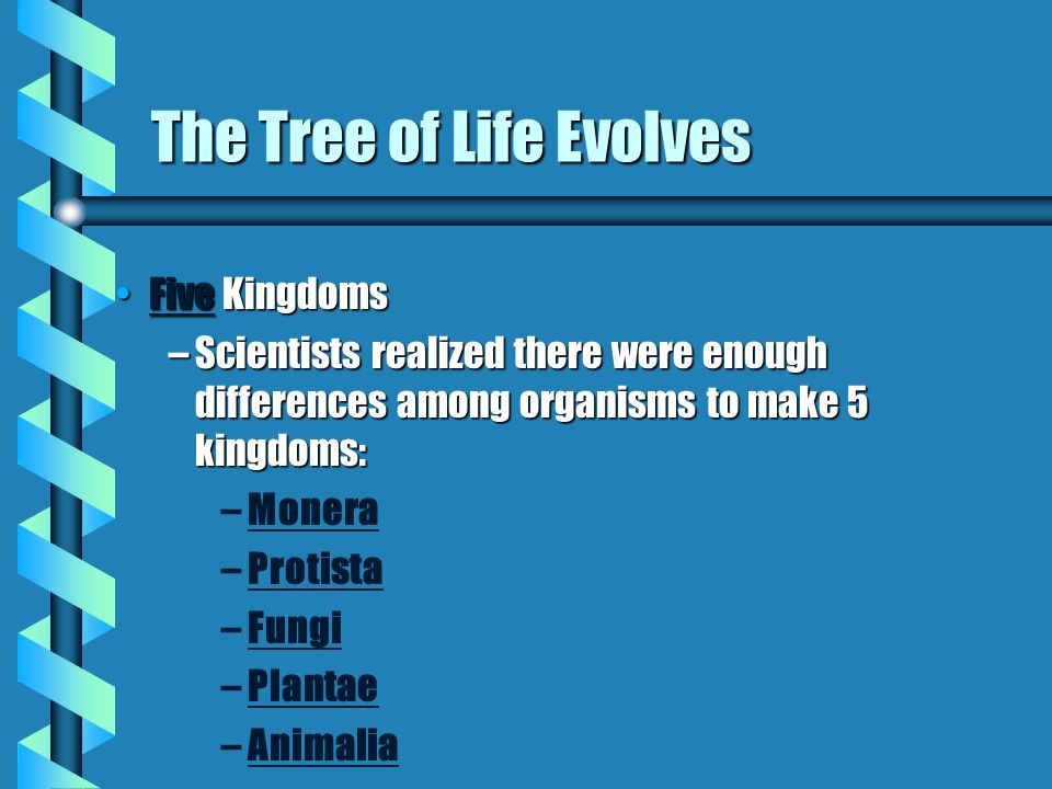 The Tree of Life Evolves Five KingdomsFive Kingdoms –Scientists realized there were enough differences among organisms to make 5 kingdoms: – –Monera – –Protista – –Fungi – –Plantae – –Animalia