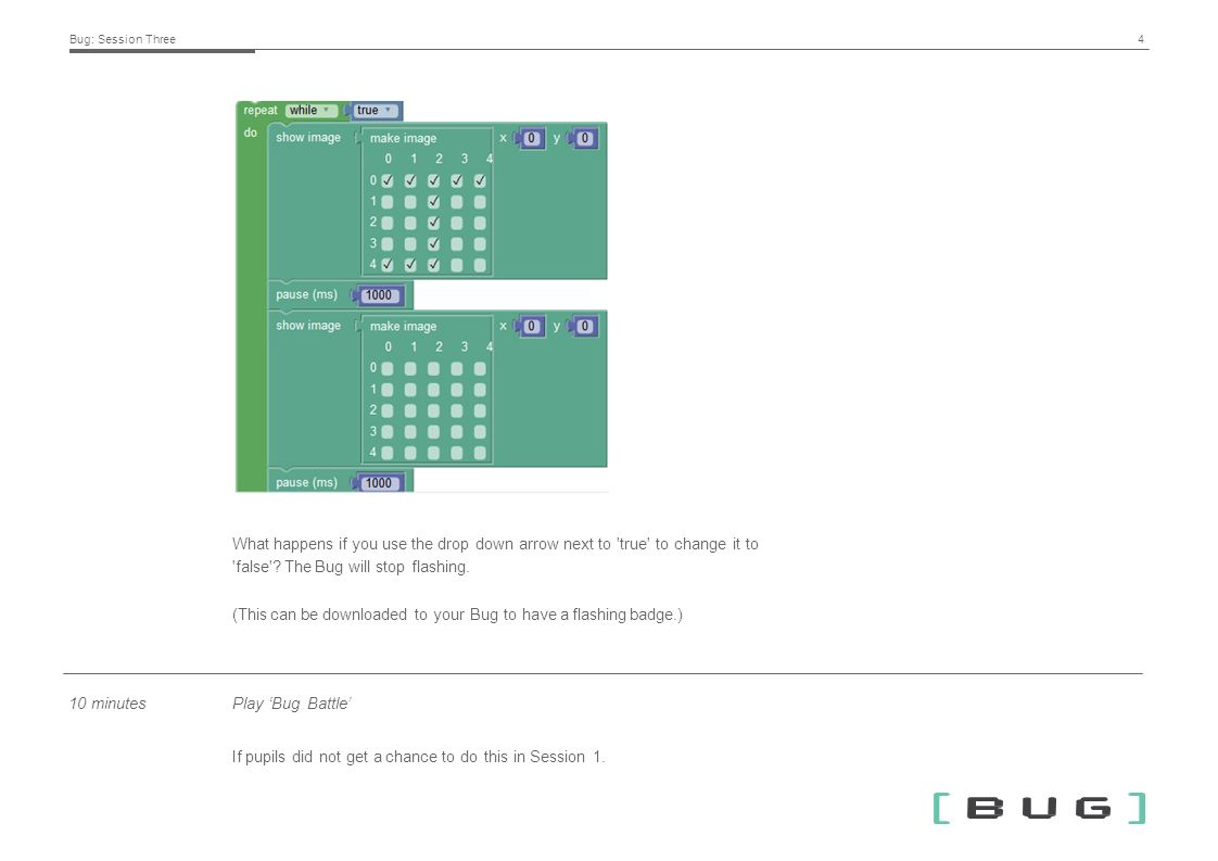 Bug Session Three. Session description In this session, pupils will ...