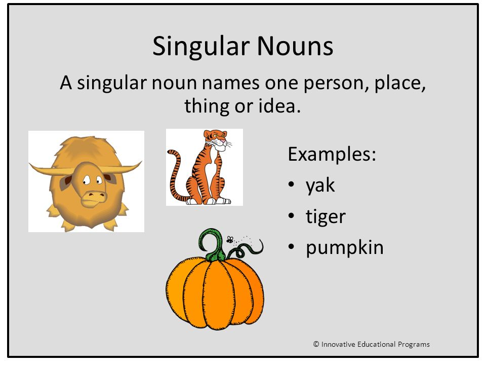 One or More Nouns Singular and Plural Nouns Primary Writing CCS LA 1 ...