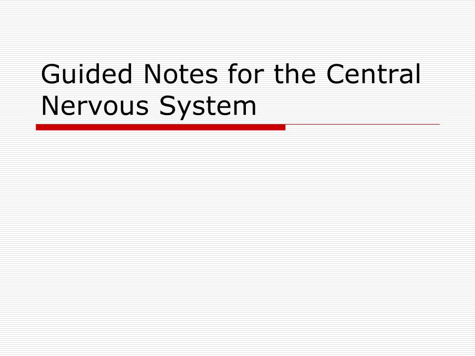 Guided Notes for the Central Nervous System