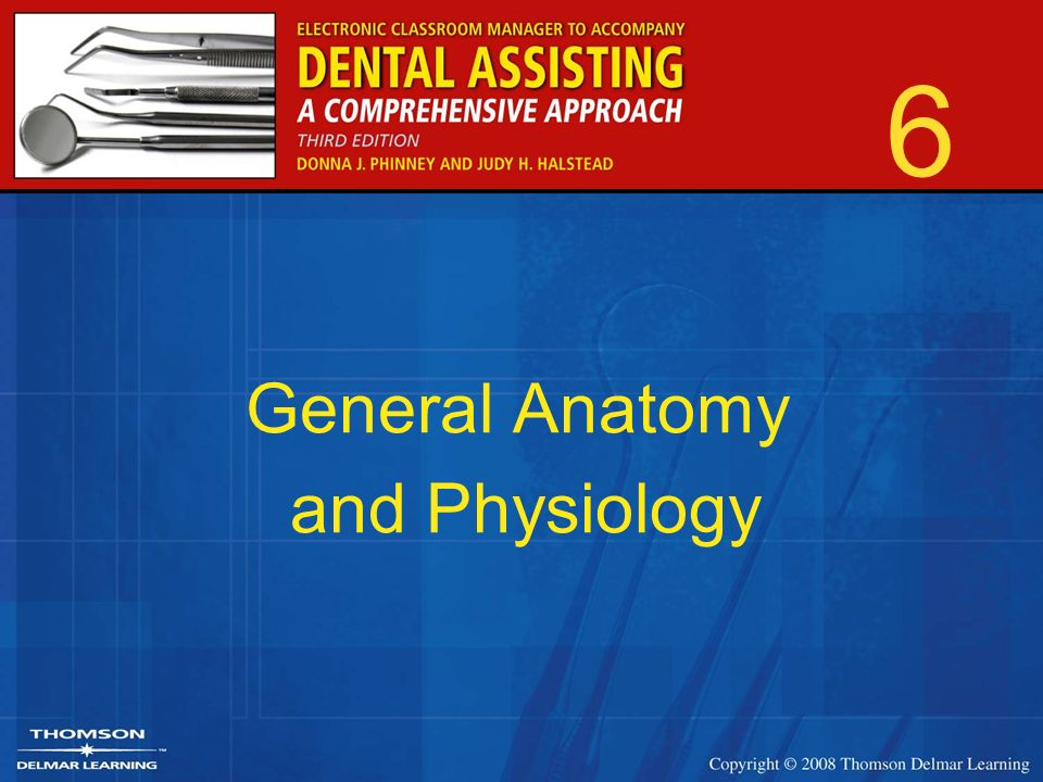 6 General Anatomy and Physiology. 2 Introduction Anatomy –Study of ...