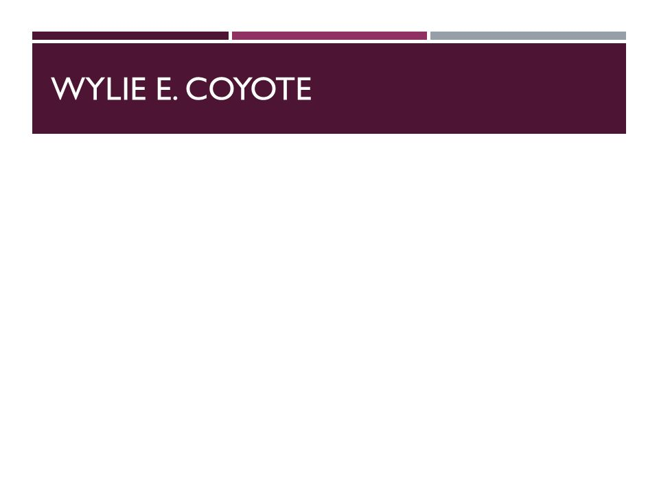 WYLIE E. COYOTE