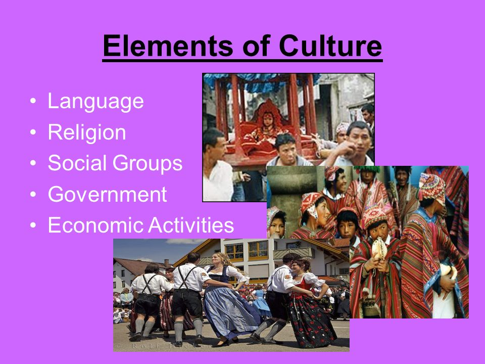 Elements of Culture Language Religion Social Groups Government Economic Activities
