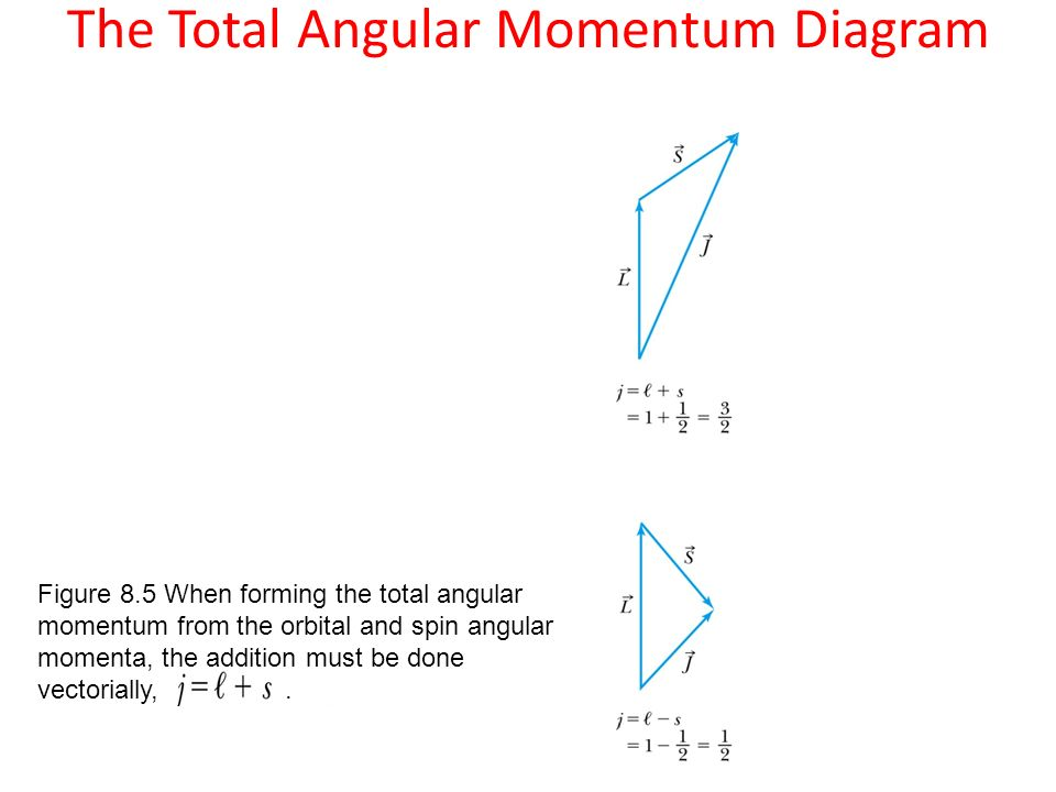 Vector coupling of angular momentum total angular momentum l l z 4 the total angular momentum diagram figure 85 when forming the total angular momentum from the orbital and spin angular momenta the addition must be done ccuart Images