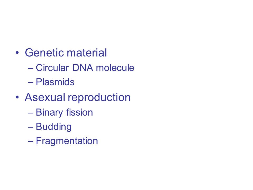 Genetic material –Circular DNA molecule –Plasmids Asexual reproduction –Binary fission –Budding –Fragmentation