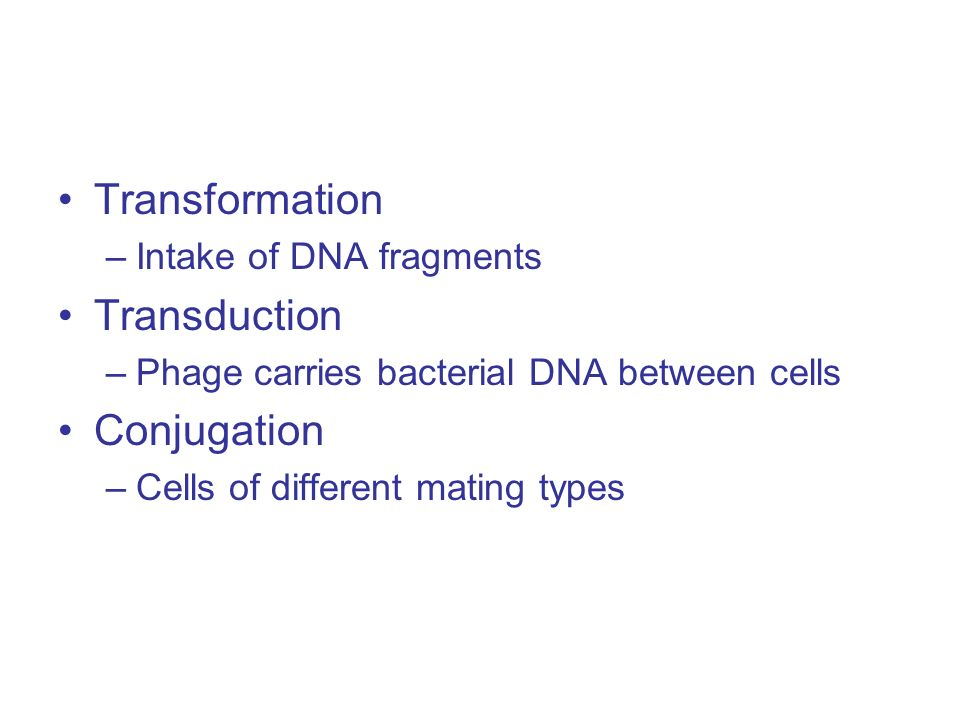 Transformation –Intake of DNA fragments Transduction –Phage carries bacterial DNA between cells Conjugation –Cells of different mating types