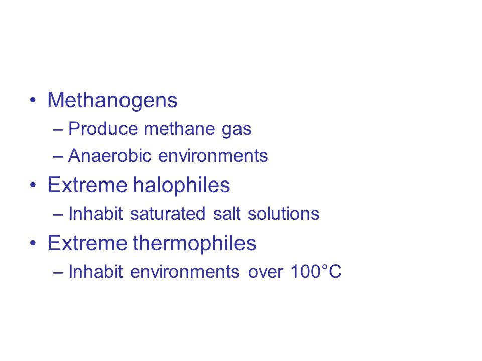 Methanogens –Produce methane gas –Anaerobic environments Extreme halophiles –Inhabit saturated salt solutions Extreme thermophiles –Inhabit environments over 100°C