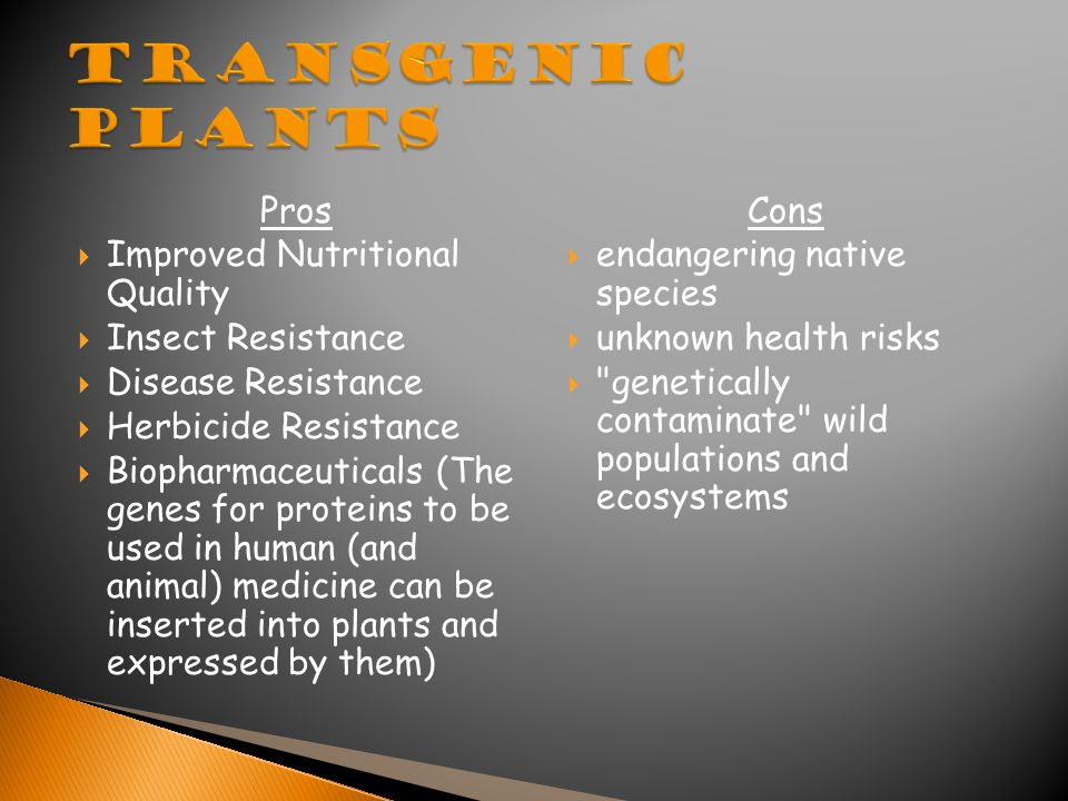 Pros  Improved Nutritional Quality  Insect Resistance  Disease Resistance  Herbicide Resistance  Biopharmaceuticals (The genes for proteins to be used in human (and animal) medicine can be inserted into plants and expressed by them) Cons  endangering native species  unknown health risks  genetically contaminate wild populations and ecosystems
