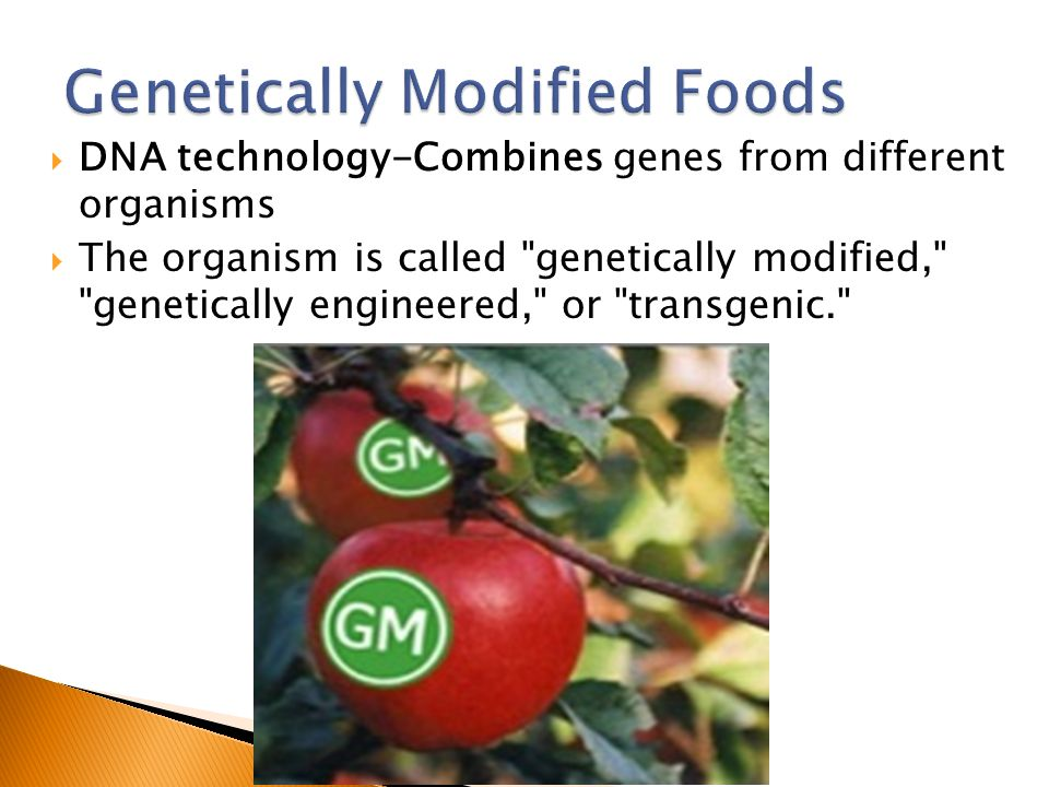  DNA technology-Combines genes from different organisms  The organism is called genetically modified, genetically engineered, or transgenic.