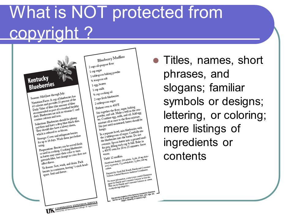 The Basics of Copyright Law  How does copyright pertain to Extension