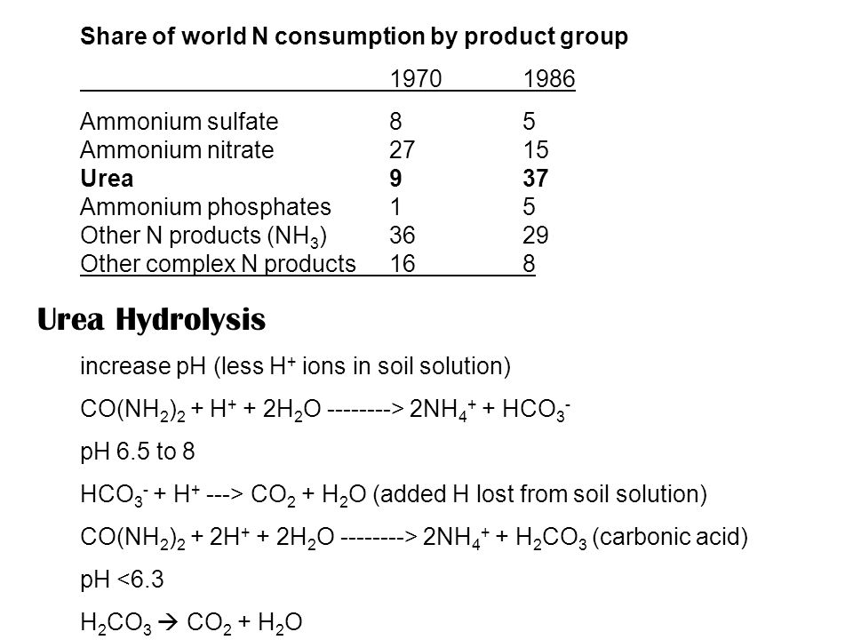 Share of world N consumption by product group 19701986 Ammonium sulfate85 Ammonium nitrate2715 Urea937 Ammonium phosphates15 Other N products (NH 3 )3629 Other complex N products168 Urea Hydrolysis increase pH (less H + ions in soil solution) CO(NH 2 ) 2 + H + + 2H 2 O --------> 2NH 4 + + HCO 3 - pH 6.5 to 8 HCO 3 - + H + ---> CO 2 + H 2 O (added H lost from soil solution) CO(NH 2 ) 2 + 2H + + 2H 2 O --------> 2NH 4 + + H 2 CO 3 (carbonic acid) pH <6.3 H 2 CO 3  CO 2 + H 2 O