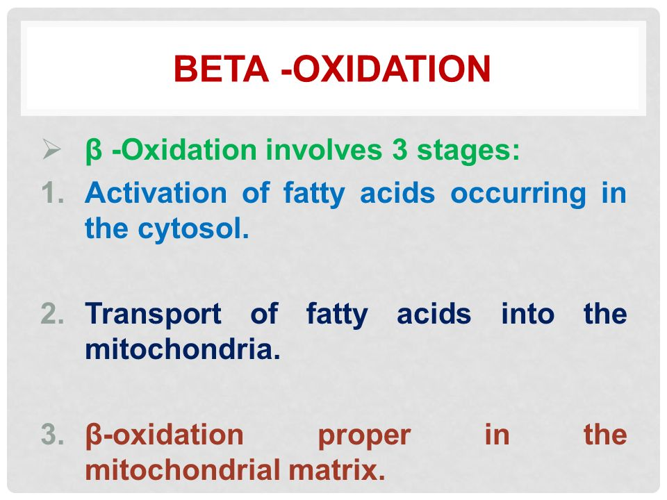 in respiration beta oxidation involves the