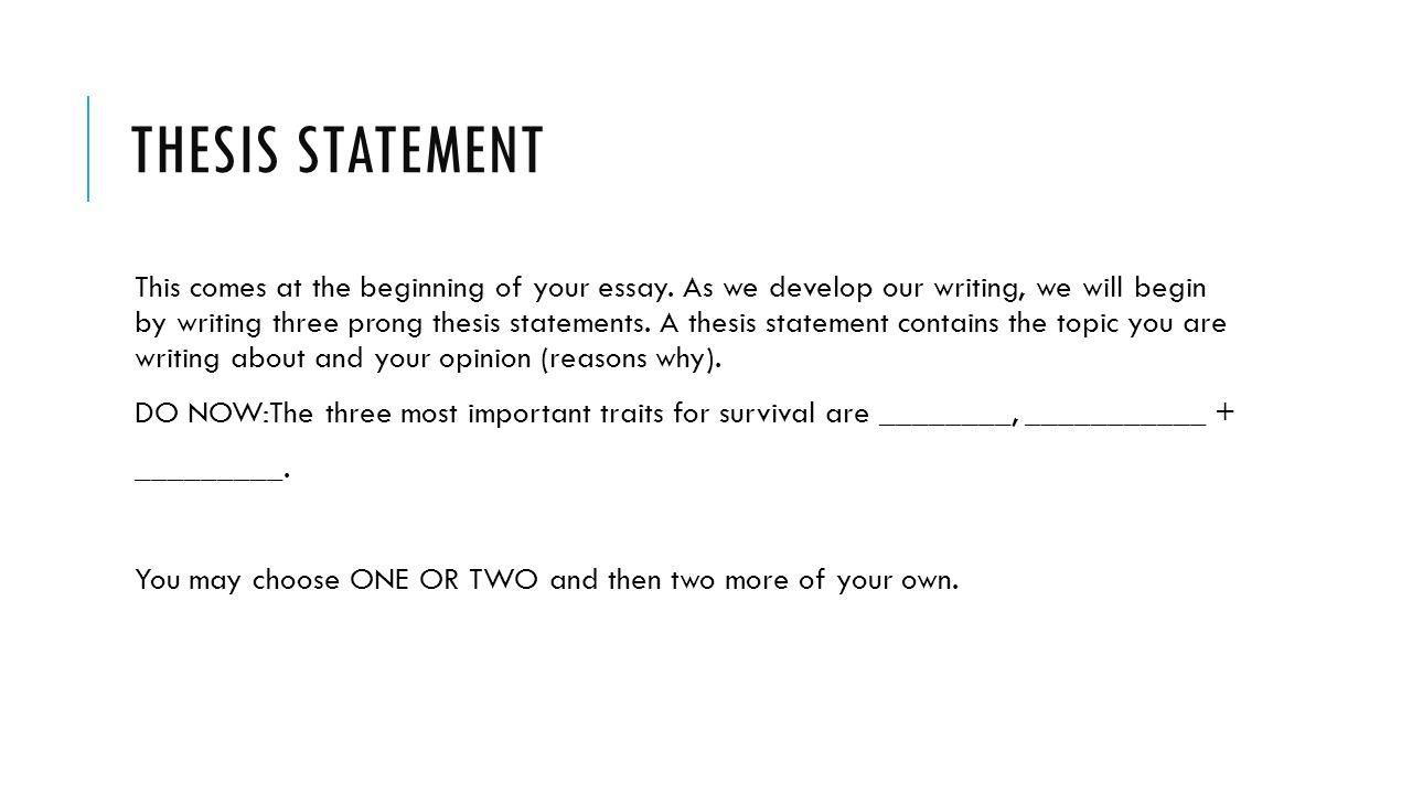Thesis statement for commentary essay essayer des lentilles en ligne
