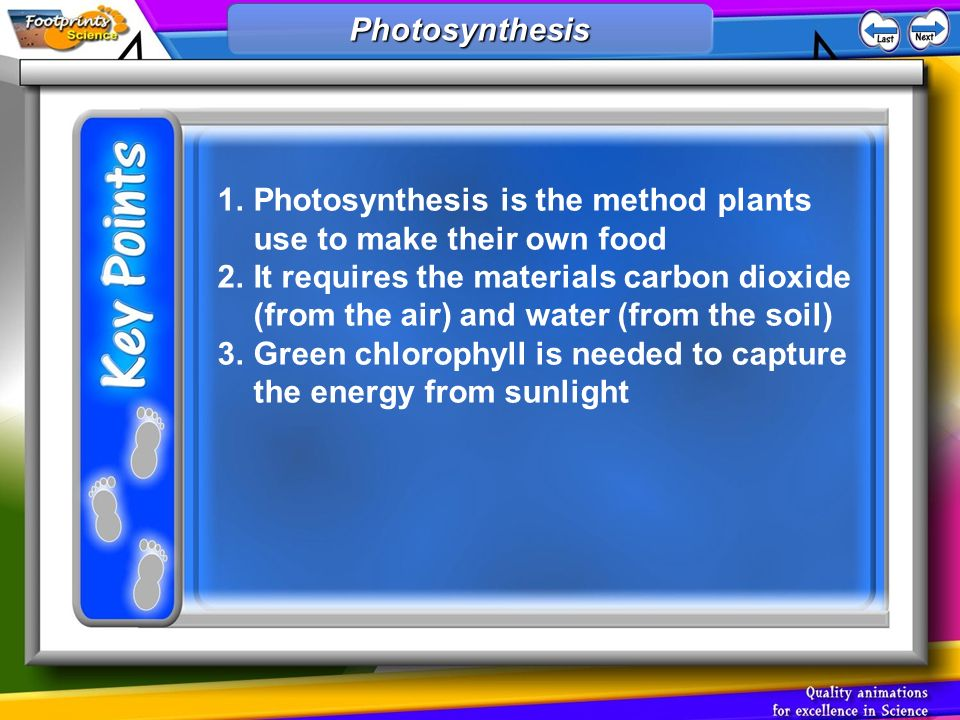 1.Photosynthesis is the method plants use to make their own food 2.It requires the materials carbon dioxide (from the air) and water (from the soil) 3.Green chlorophyll is needed to capture the energy from sunlight Photosynthesis Photosynthesis