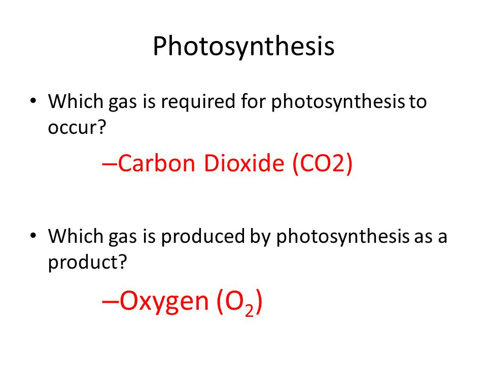 Photosynthesis Which gas is required for photosynthesis to occur.