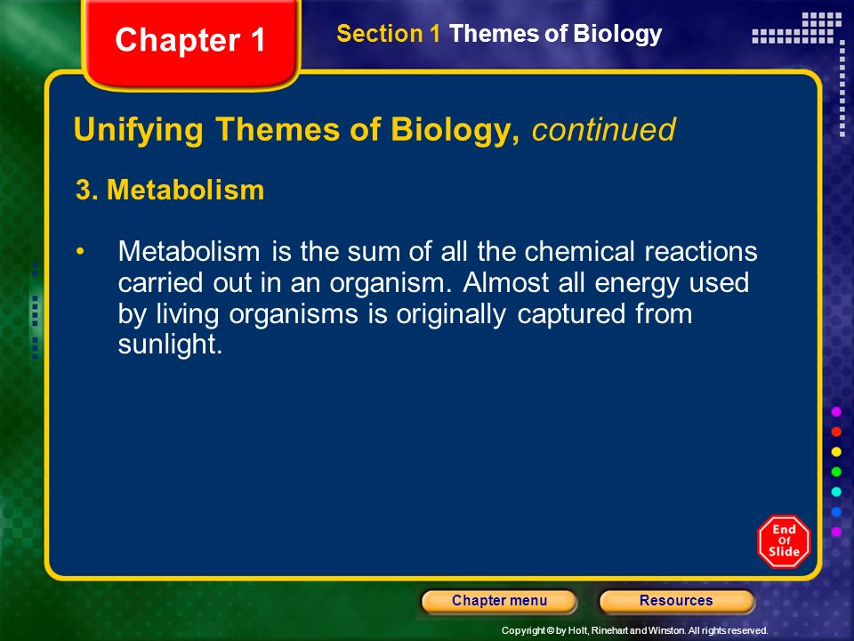 holt biology review answers 51