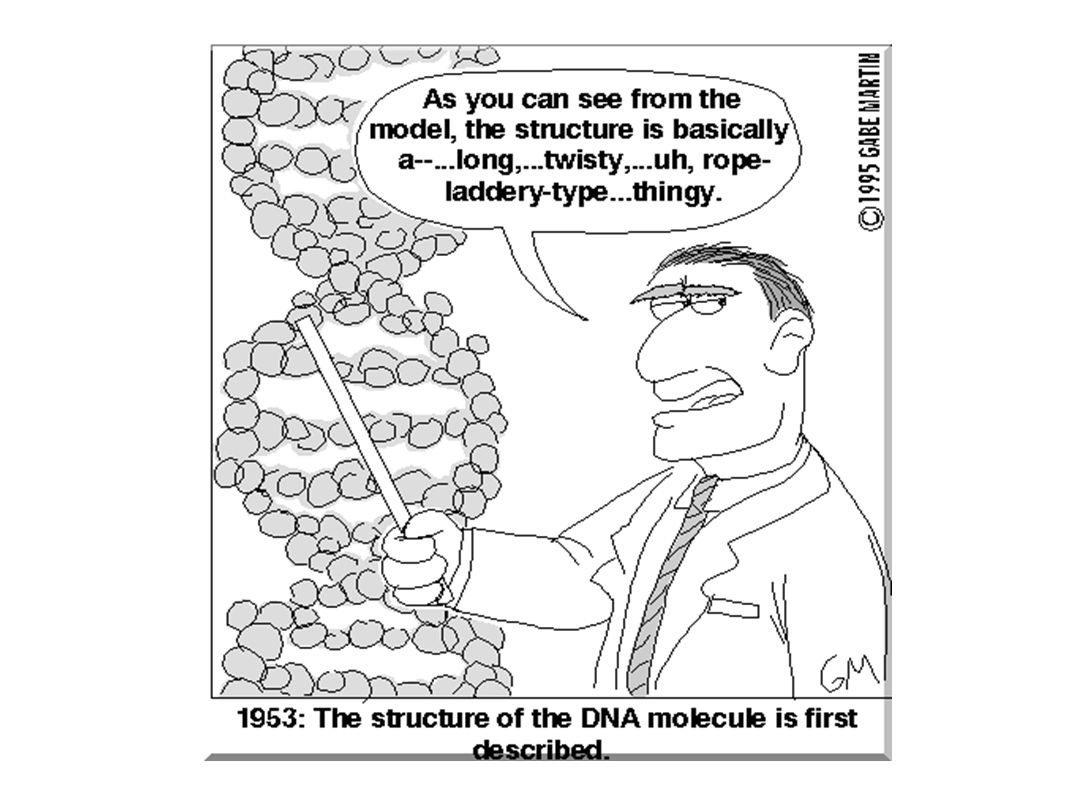 Dna the blueprint of life dna stands for deoxyribonucleic acid 3 dna stands for deoxyribonucleic acid malvernweather Image collections