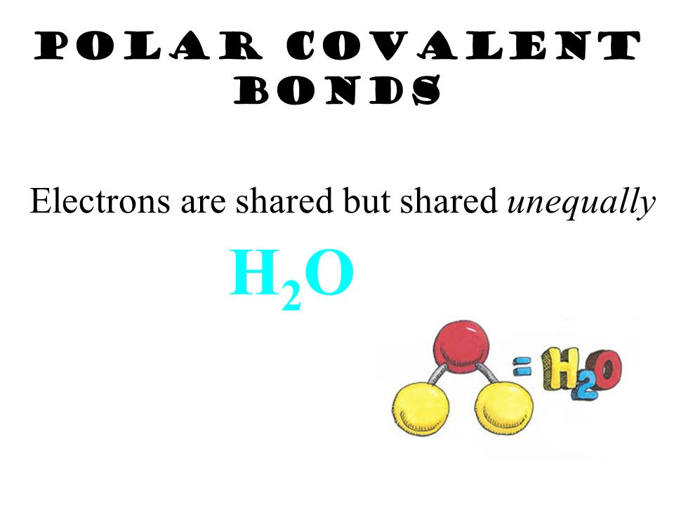 Diatomic Molecules Nonmetals called the Heavenly 7