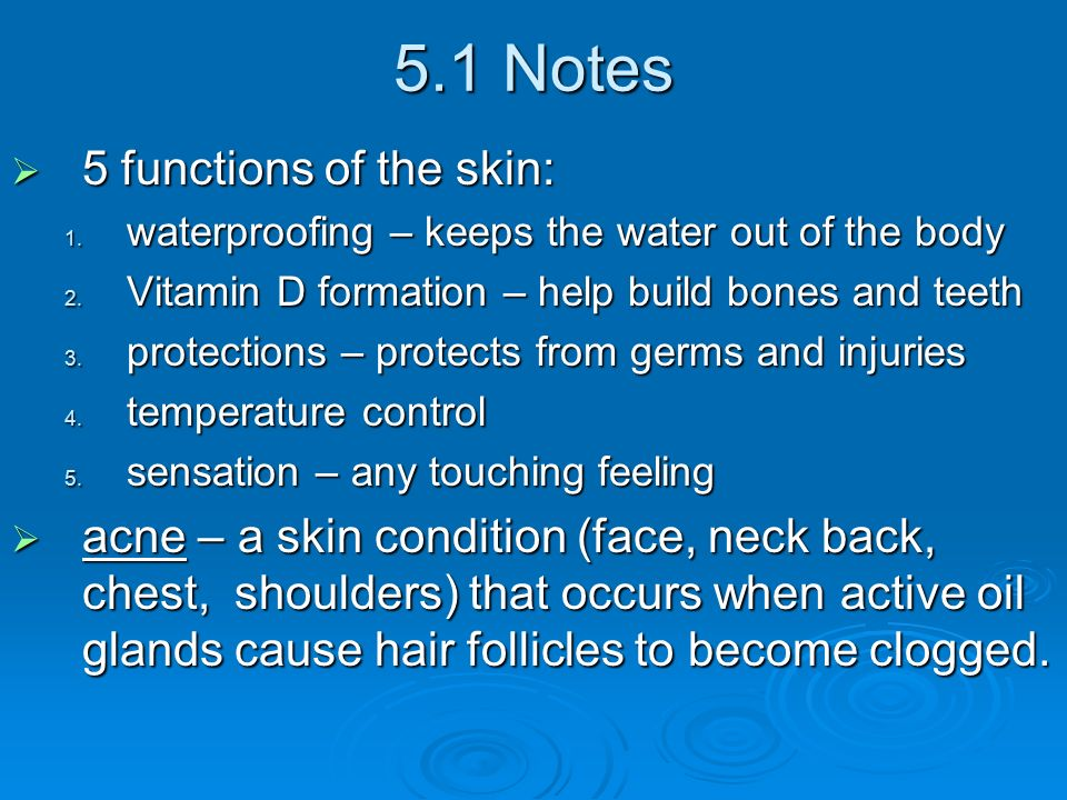 5.1 Notes  5 functions of the skin: 1. waterproofing – keeps the water out of the body 2.