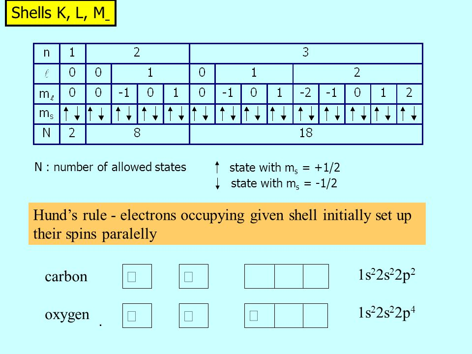 Shells K, L, M N : number of allowed states state with m s = +1/2 state with m s = -1/2      1s 2 2s 2 2p 2 1s 2 2s 2 2p 4 carbon oxygen Hund's rule - electrons occupying given shell initially set up their spins paralelly