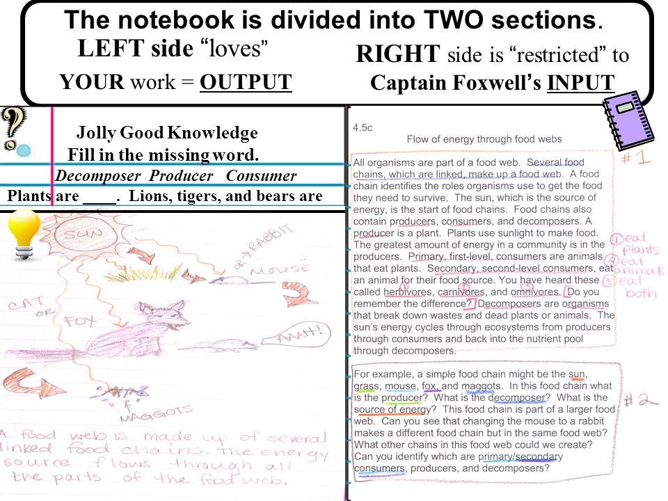 The notebook is divided into TWO sections.