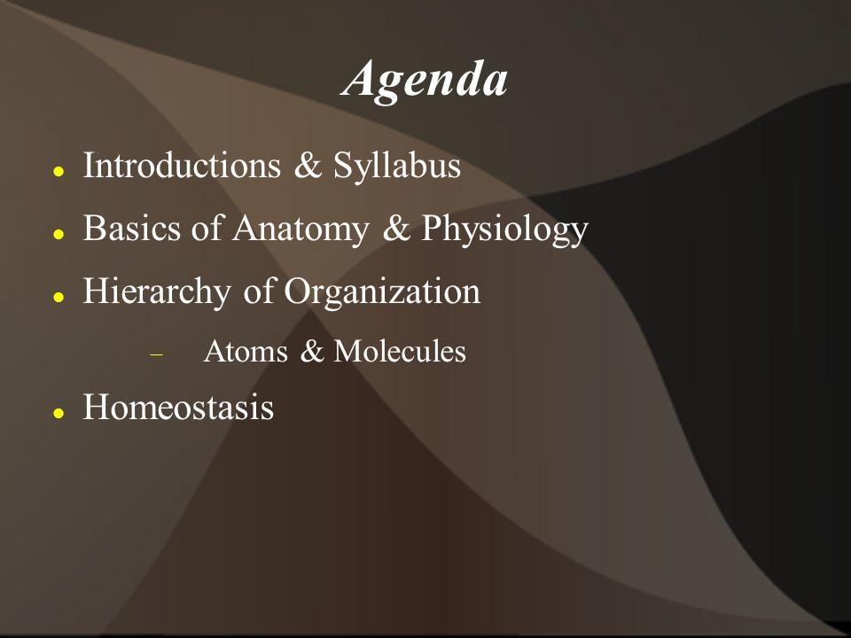 Biology 160 Human Anatomy And Physiology San Diego Mesa College