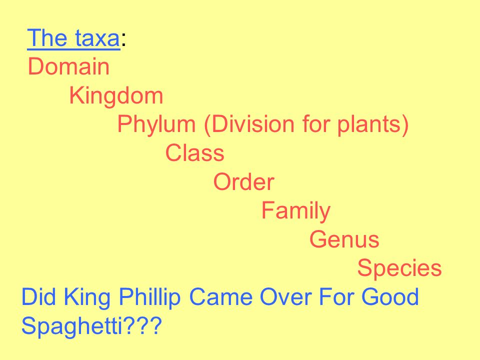 The taxa: Domain Kingdom Phylum (Division for plants) Class Order Family Genus Species Did King Phillip Came Over For Good Spaghetti
