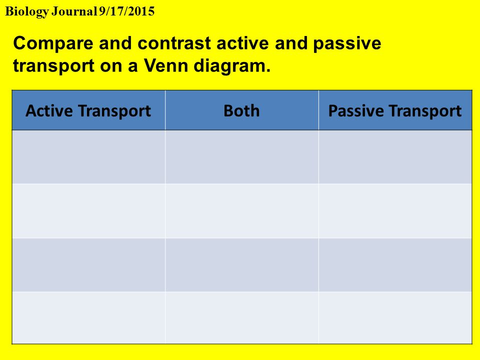 Active Transportbothpassive Transport Compare And Contrast Active