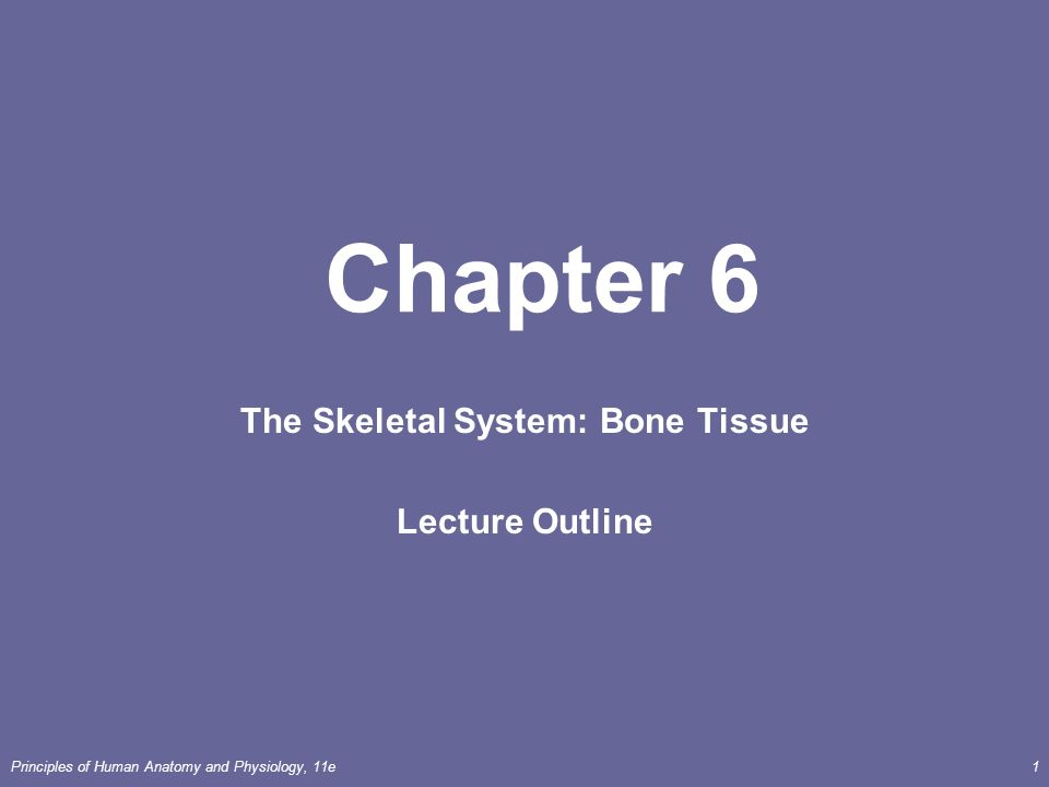 Principles of Human Anatomy and Physiology, 11e1 Chapter 6 The ...