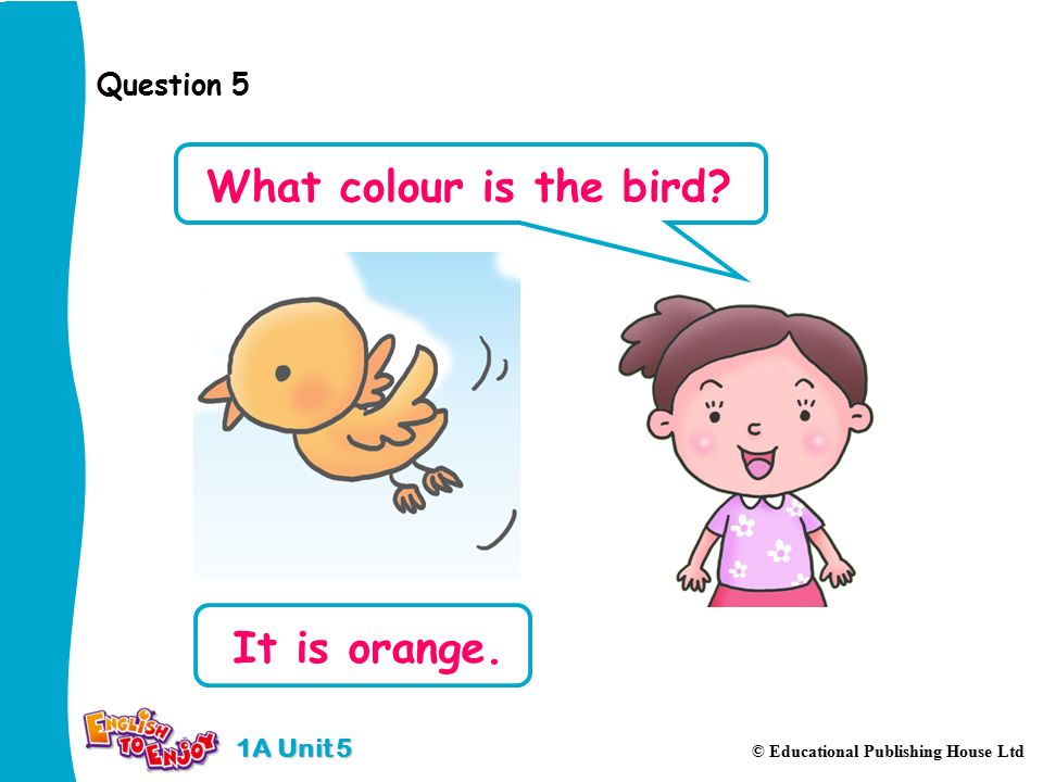 1A Unit 5 © Educational Publishing House Ltd Question 5 It is orange. What colour is the bird