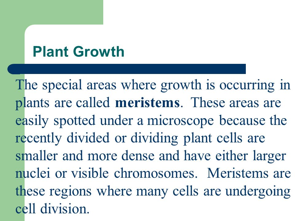 Plant Growth Growth in plants can result in an increase in length, or an increase in thickness, or both.