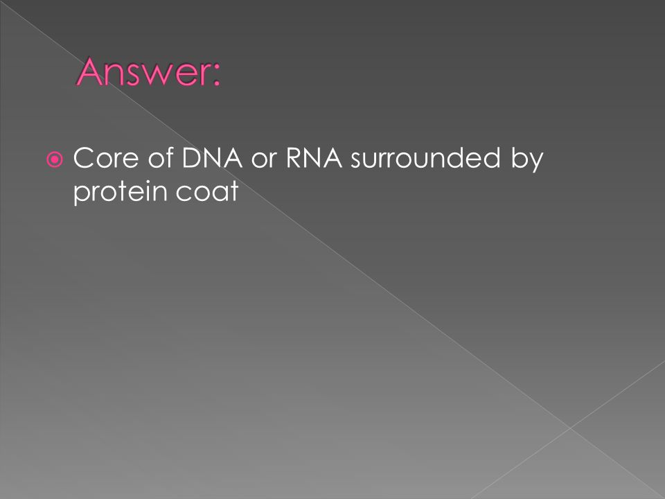  Core of DNA or RNA surrounded by protein coat
