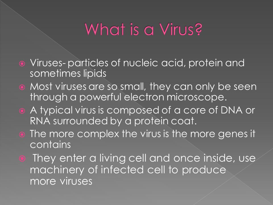  Viruses- particles of nucleic acid, protein and sometimes lipids  Most viruses are so small, they can only be seen through a powerful electron microscope.