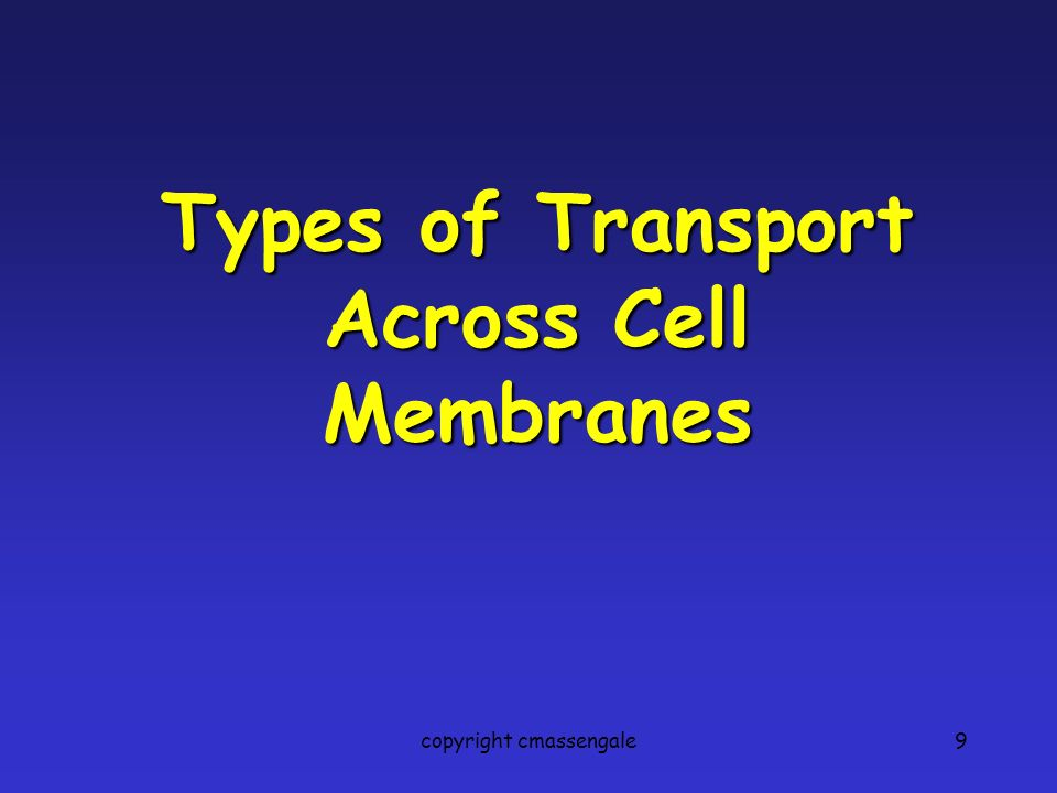 9 Types of Transport Across Cell Membranes copyright cmassengale