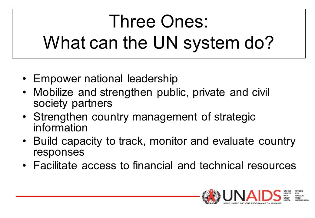 Three Ones: What can the UN system do.
