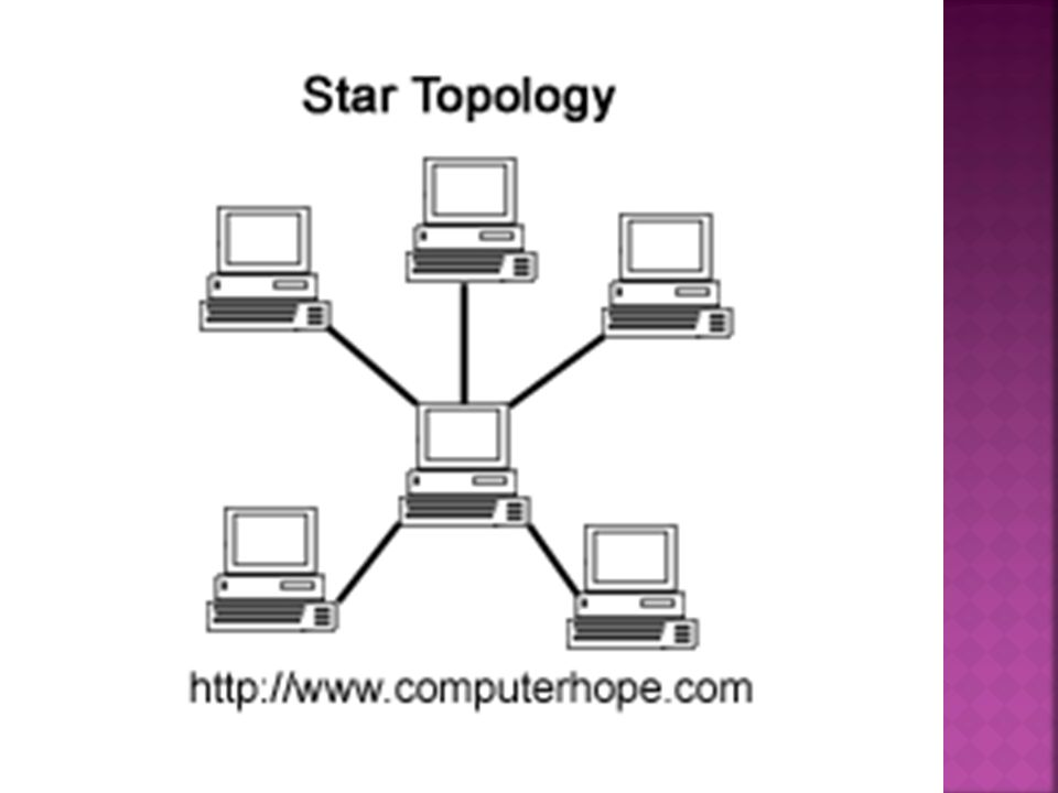 what is the most common network topology