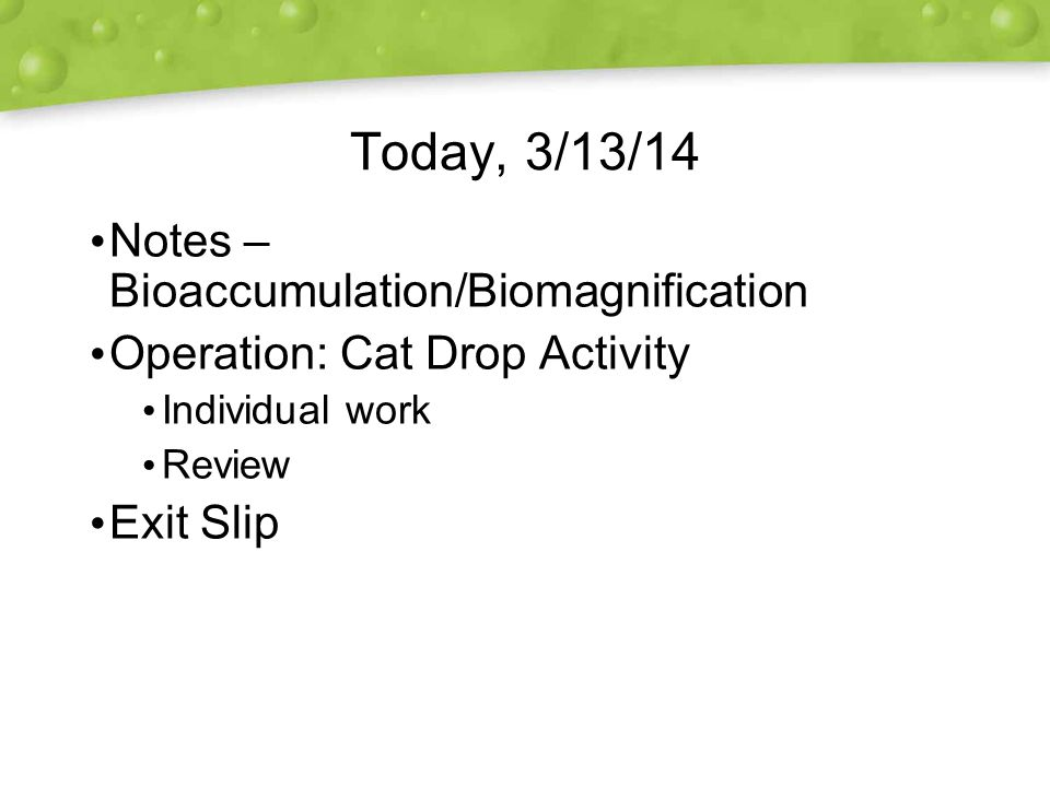 Today, 3/13/14 Notes – Bioaccumulation/Biomagnification Operation: Cat Drop Activity Individual work Review Exit Slip Notes – Bioaccumulation/Biomagnification Operation: Cat Drop Activity Individual work Review Exit Slip