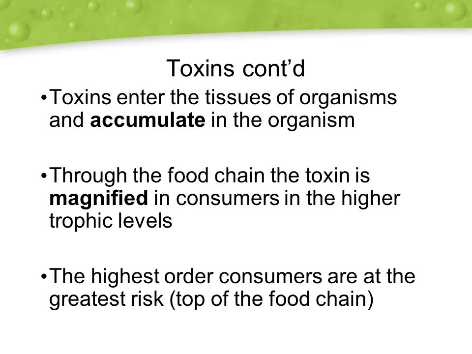 Toxins cont'd Toxins enter the tissues of organisms and accumulate in the organism Through the food chain the toxin is magnified in consumers in the higher trophic levels The highest order consumers are at the greatest risk (top of the food chain) Toxins enter the tissues of organisms and accumulate in the organism Through the food chain the toxin is magnified in consumers in the higher trophic levels The highest order consumers are at the greatest risk (top of the food chain)